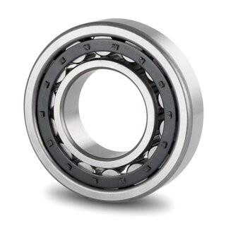 Cylindrical Roller Bearing NU320 E 100x215x47 mm