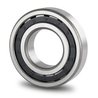Cylindrical Roller Bearing NJ321 E 105x225x49 mm